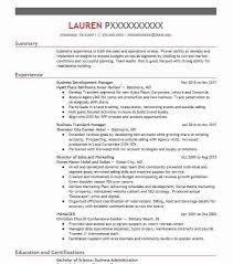 executive resume sles digital sales executive resume exle yp marketing reno nevada