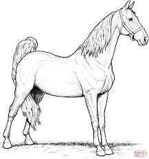 color pages of horses free horse coloring pages for girls in free