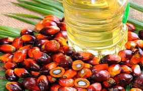Minyak Kelapa Di Supermarket sawit kontribusi 50 bahan baku produk di supermarket nasionalisme co