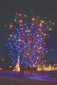 hudson gardens christmas lights the great christmas light fight season 1 episode 5 macrina family