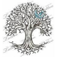 family tree search tatts