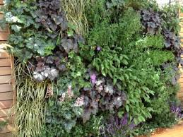 10 best living walls garden design images on pinterest garden