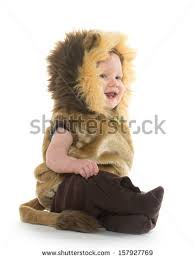 Baby Lion Costume 18monthold Baby Boy Lion Costume Halloween Stock Photo 157927769