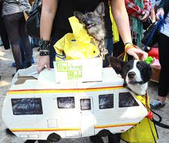 24th annual tompkins square halloween dog parade photos