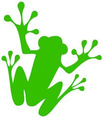 august 8 2017 u2013 tree frog creative
