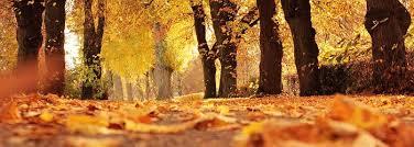 autumn nature walks u2013 stmamom