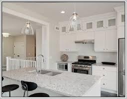 Blanco Silgranit Sink Home Design Ideas - Blanco silgranit kitchen sink
