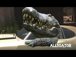Crocodile Meme - interior crocodile alligator know your meme