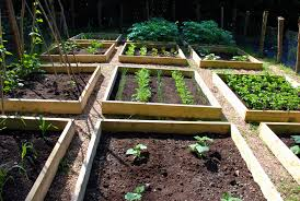 image of raised garden bed designs ideas vegetable raised bed