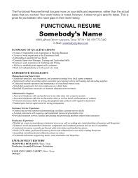 Summary On A Resume How To Make A Resume With One Job Free Resume Example And