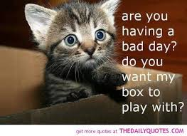 Having A Bad Day Meme - are you having a bad day meme chris the story reading ape s blog