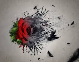best 25 3 roses tattoo ideas on pinterest tattoos of roses