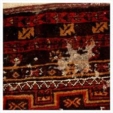 Area Rugs Indianapolis Moth Insect Area Rug Cleaning Indianapolis In