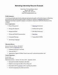 resume style exles resume template for internship pointrobertsvacationrentals