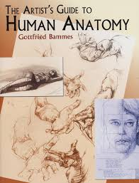 Visual Anatomy And Physiology Pdf Gottfried Bammes The Artist U0027s Guide To Human Anatomy 2004 Pdf
