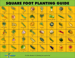 square foot planting guide vegetable garden plan per square foot ideas