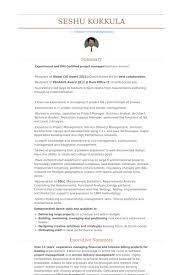 assistant vice president resume samples visualcv resume samples