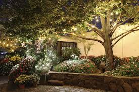 Landscape Lighting Ideas Pictures 75 Brilliant Backyard Landscape Lighting Ideas 2018