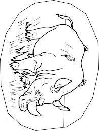 rhinoceros coloring page animals town free rhinoceros color sheet