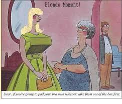 Blonde Moment Meme - 25 best memes about a brilliant brunette a brilliant brunette
