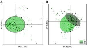 Seeking Plot Comparison Of A A Pca Scoreplot And B The Pls Da Scoreplot