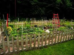 26 best garden gates fences images on pinterest veggie gardens