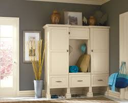 Entry Storage Cabinet Types Of Entryway Storage Ideas Theringojets Storage