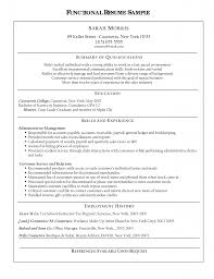 Functional Resume Template Sales Freelance Resume Sample Resume For Your Job Application