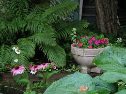 Shade Garden Ideas Shade Garden
