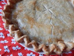 the nerdy chef australian meat pie