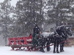 carriage sleigh rides m lazy c guest ranch m lazy