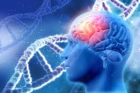 konzentrationsschwäche medikamente konzentrationsschwäche gehirnjogging hilft