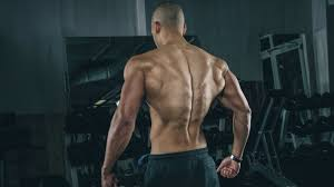 3 exercises for a lower back fitness