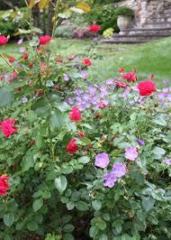 cottage garden design ideas garden design