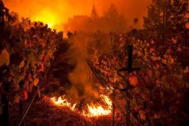 Wildfire Woodland Hills Ca by Inside The Wine Country Fires