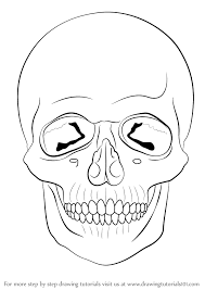 learn how to draw a skull skulls by drawing tutorials