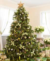 decorating a green tree home design and decorating