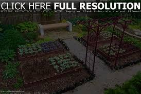 kitchen garden design garden ideas