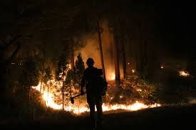 Wildfire Near Reno by Fire Season Tamer Than Expected U S Burn Acreage Far Below