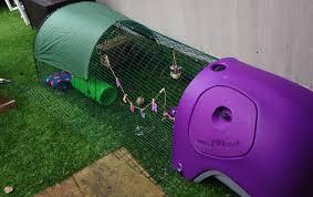 Best Rabbit Hutches Eglu Classic Rabbit Hutch Rabbit House For Two Rabbits