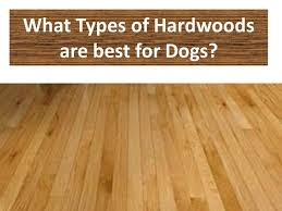 fabulous best flooring for pets owen flooring what is the most