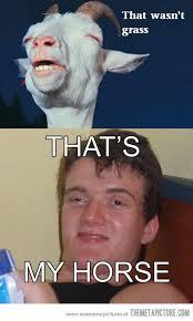 High Kid Meme - high horse the meta picture