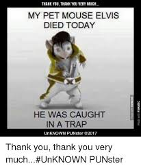Thank You Very Much Meme - thank you thank you very much my pet mouse elvis died today he was