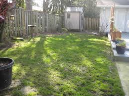small backyard landscaping ideas for kids fleagorcom
