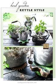 indoor herb garden ideas total survival