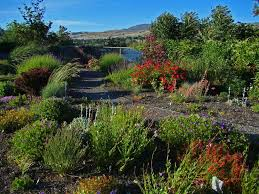 Xeriscape Landscaping Ideas Asola Landscaping Ideas For Xeriscape Info