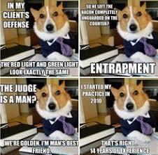 Law Dog Meme - legalhumor humor majeski law llc www majeskilaw com legal
