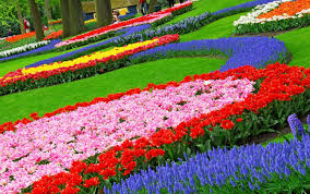 Pretty Flower Garden Ideas Flowers Gardens And Landscapes New At Cool Flower Garden Landscape