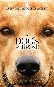 a dog u0027s purpose 7 differences between the movie and the book