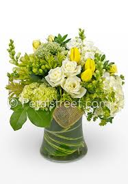 White Flower Arrangements Sympathy Arrangement With White Yellow And Green Flowers Pt